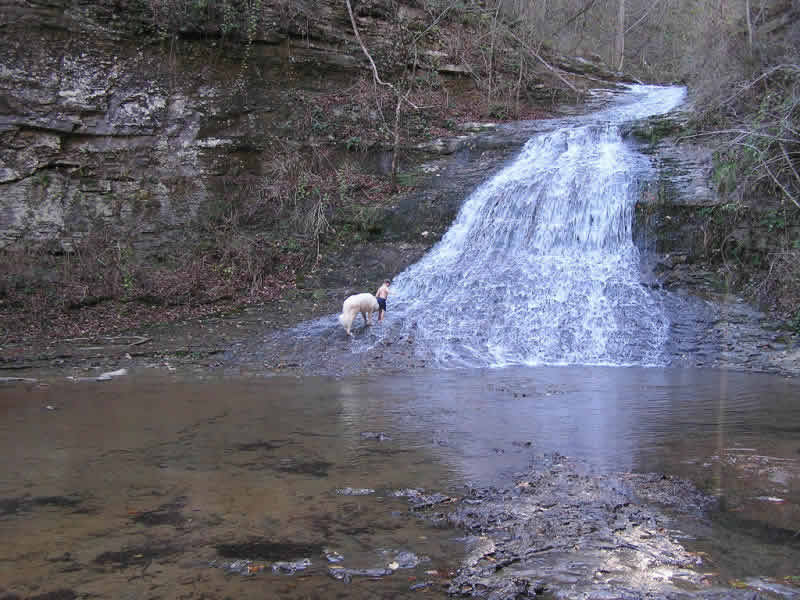 Cole and Carter investigate waterfall