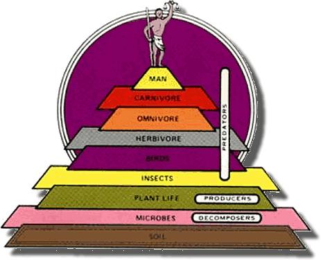 AlbrechtsPyramid3